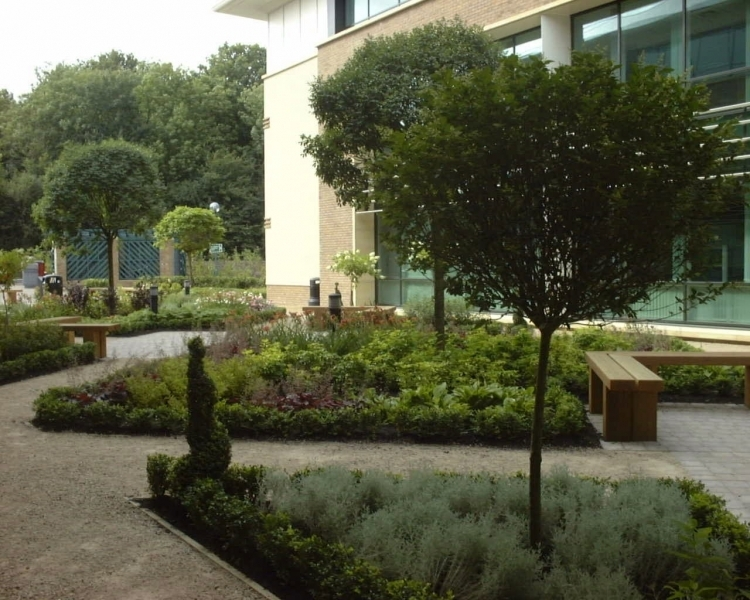BARTLEYWOOD COURTYARD 03